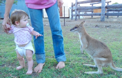 Meeting skippy